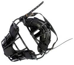 Catchers Helmet Wire