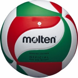 Volleyball Molten 5000 Leather